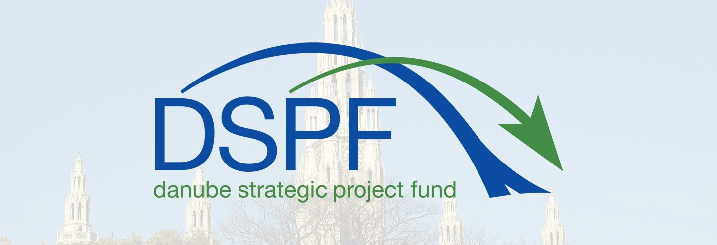 DSPF Kick-Off Meeting